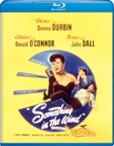 Something in the Wind Blu-ray