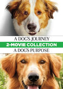 A Dog's Journey / A Dog's Purpose 2-Movie Collection