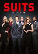 Suits: Season Eight