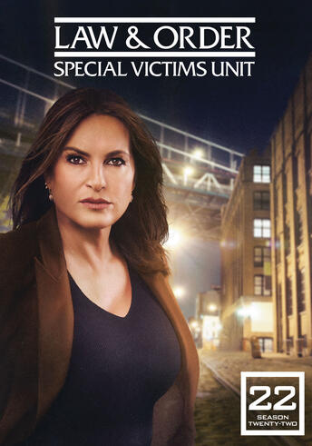 Law & Order Special Victims Unit: The Twenty Second Year